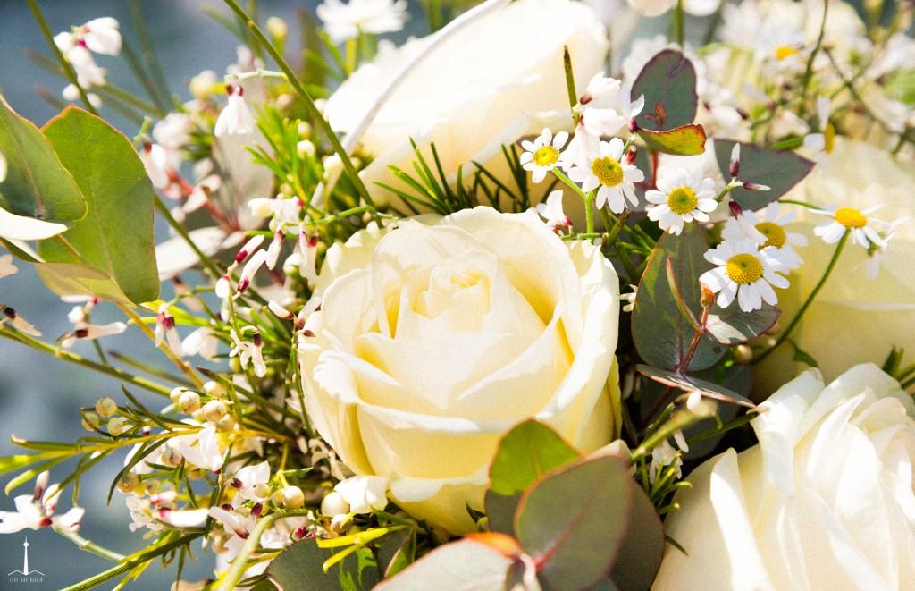 wedding-berlin-les-rotes-fotografia-puertas-abiertas-9